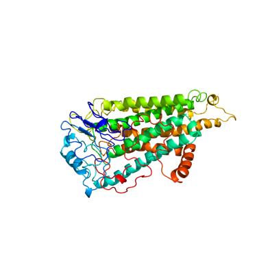 CNR1_Human_Cannabinoid_receptor_1